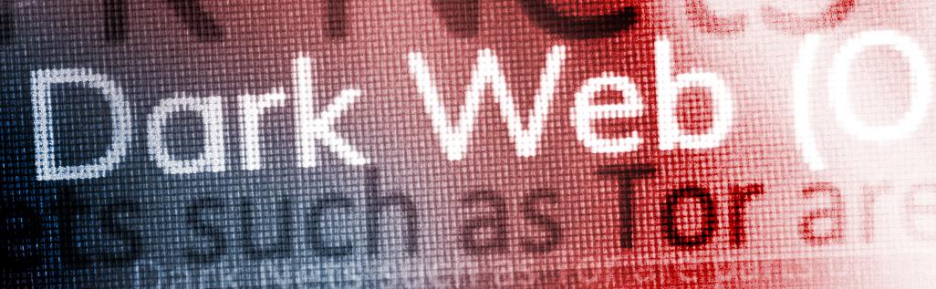 Fraud on the Dark Web
